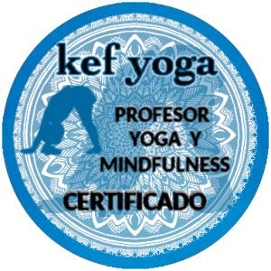 logo kef profesor certificado