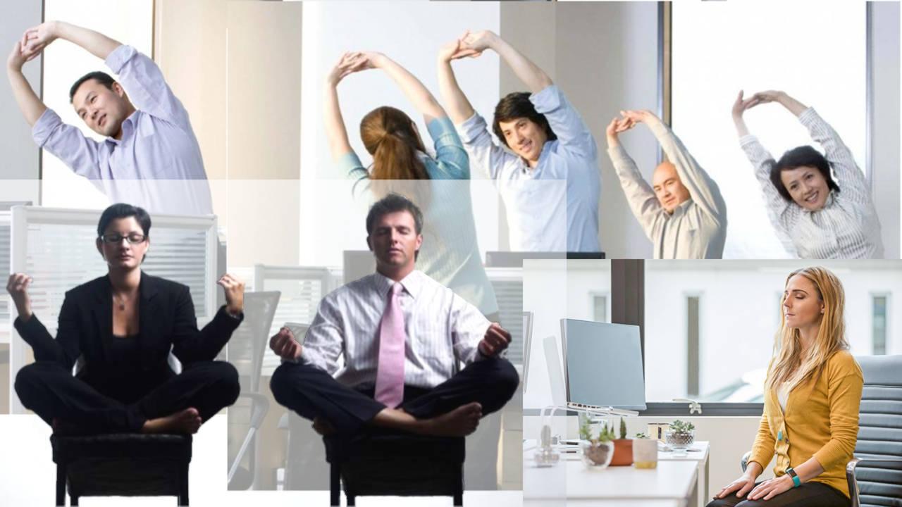 ¿Que es el estrés y como regularlo? Parte 2
